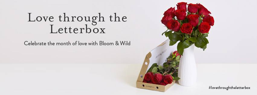 bloom and wild letterbox flowers